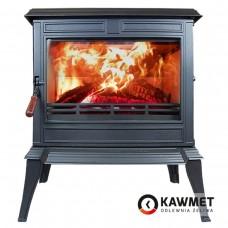 Чугунная печь KAWMET Premium S12-12,3 кВт